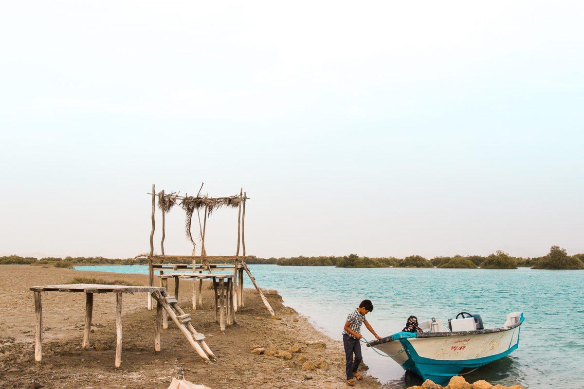 Mangrove Forest on Qeshm Island Iran