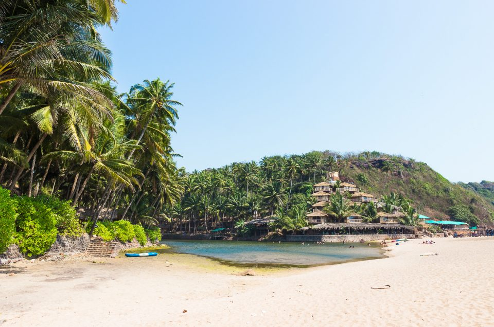 The Best Beaches in Goa for Backpackers