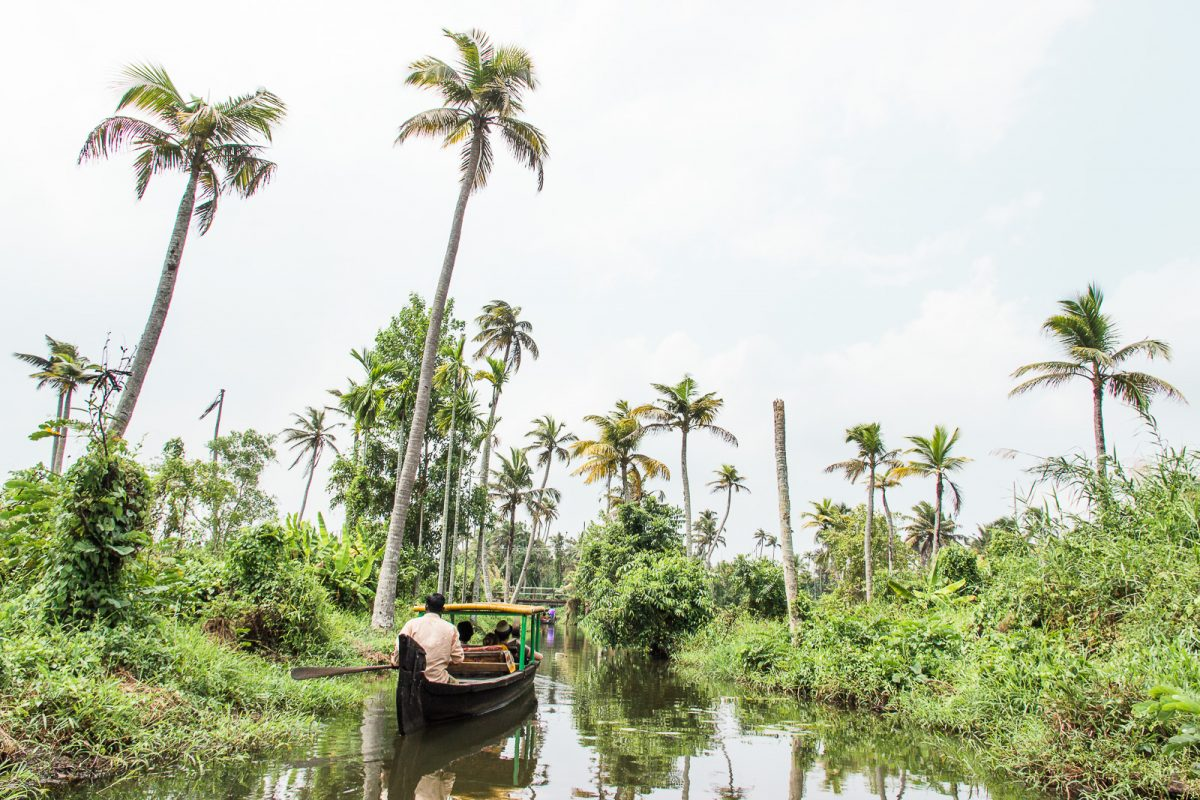 Views from the Alleppey Boat Tour through the Backwaters