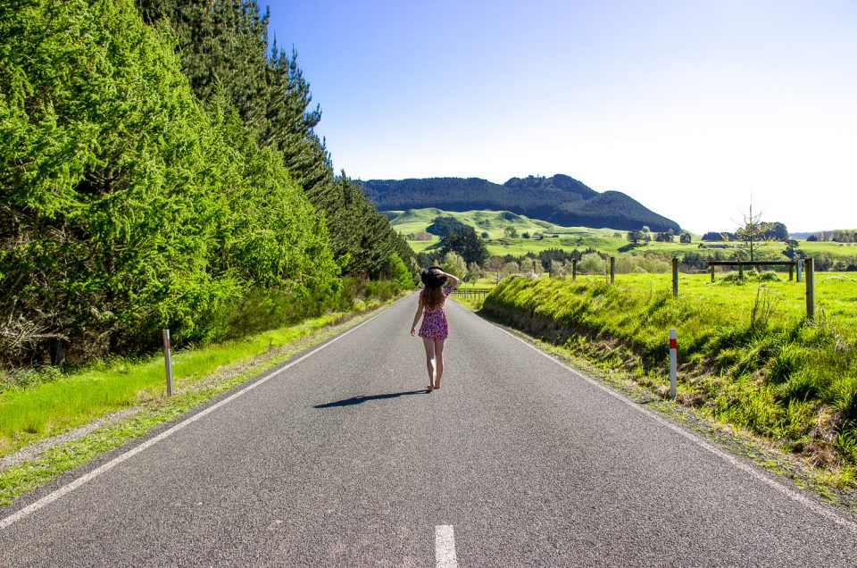 Work and Travel in New Zealand on a Working Holiday Visa