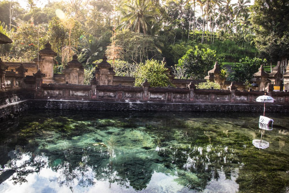 The holy spring of the Tirta Empul Temple