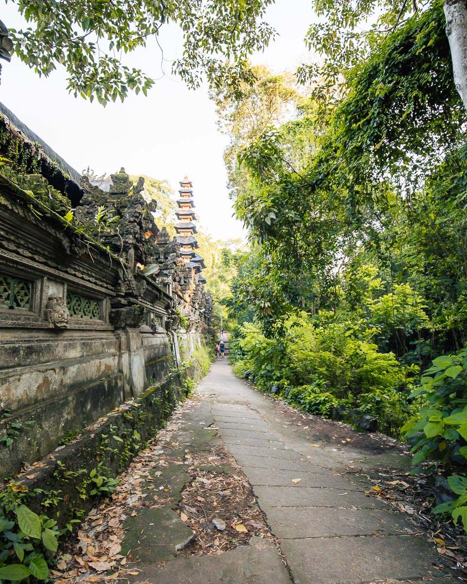 path leading to the campuhan ridge walk in ubud bali