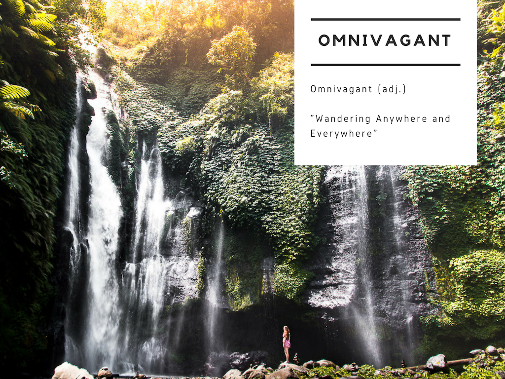 omnivagant - work with me