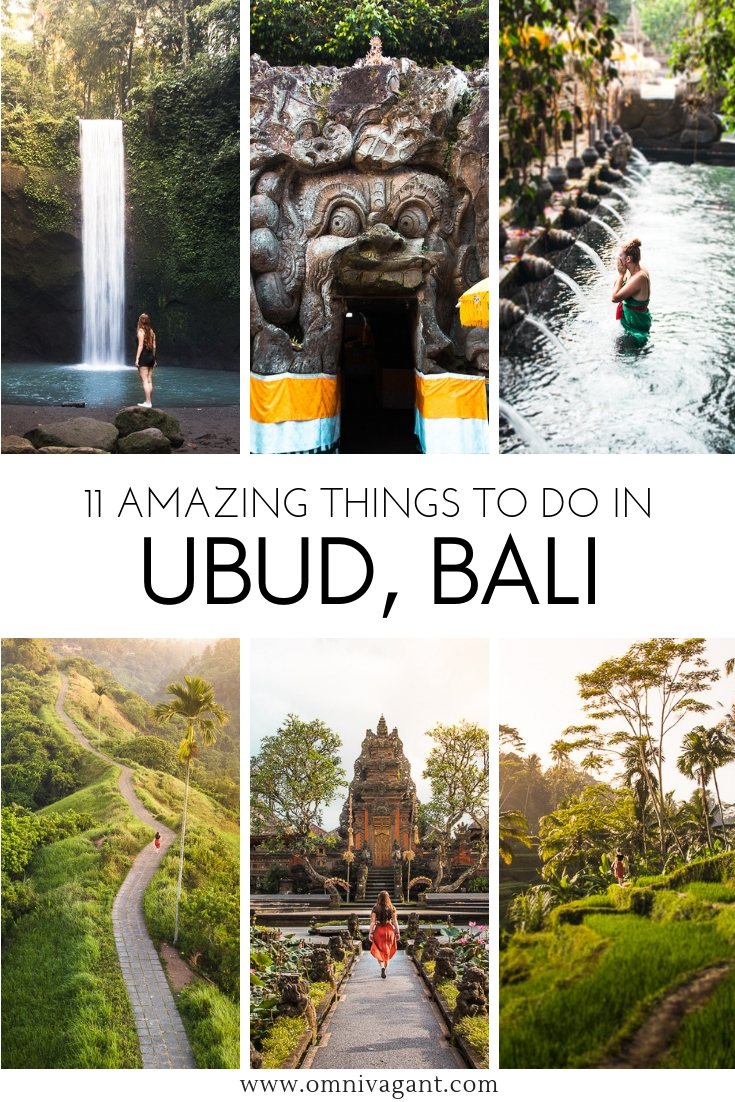 amazing things to do in ubud bali