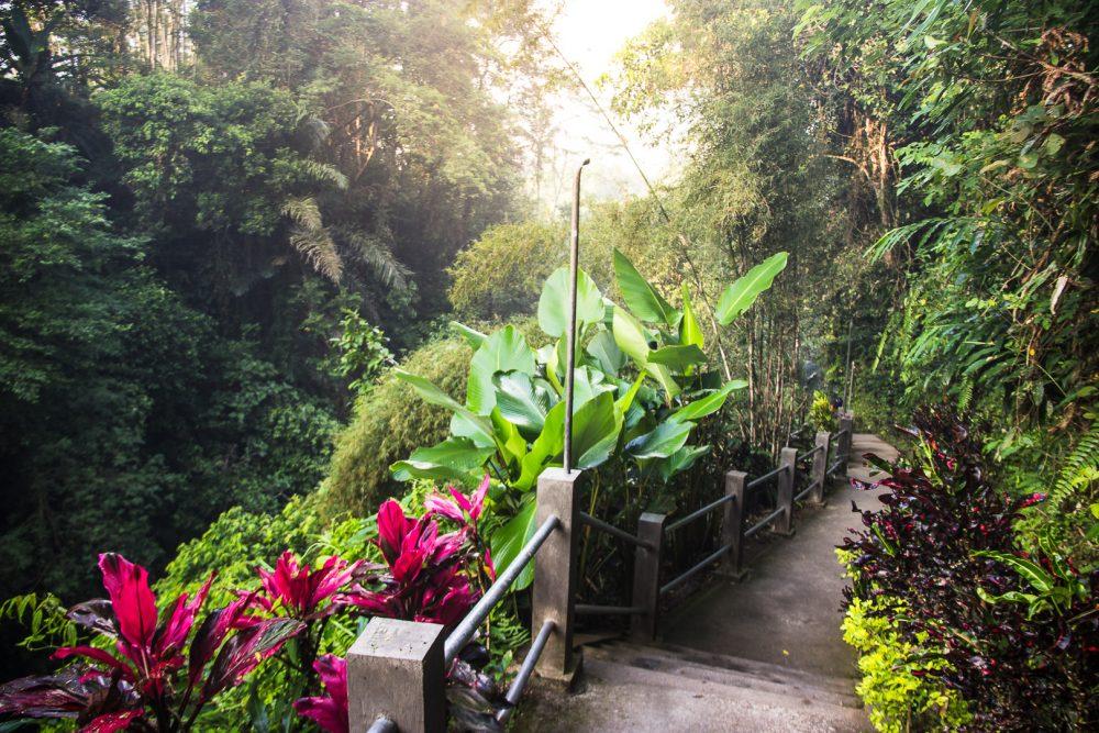 path down to tibumana waterfall