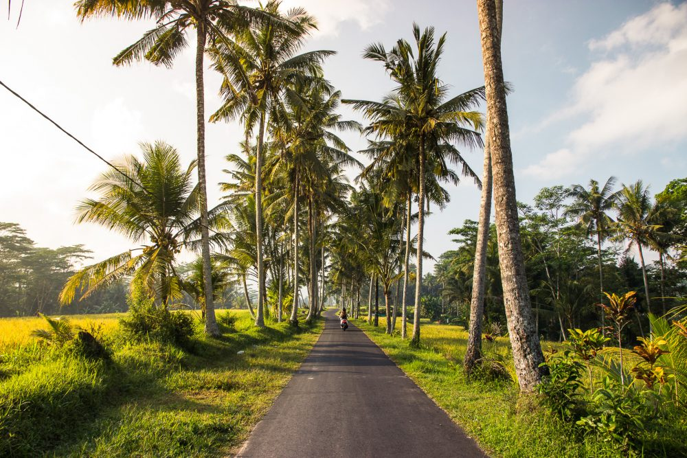 Road to the Tibumana Waterfall in Ubud Bali