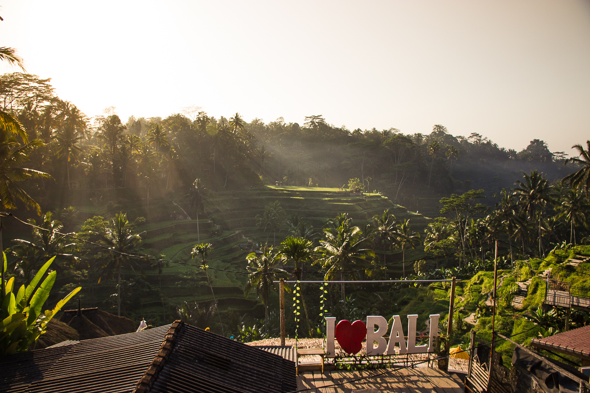 cafes at tegalalang rice terraces in ubud bali