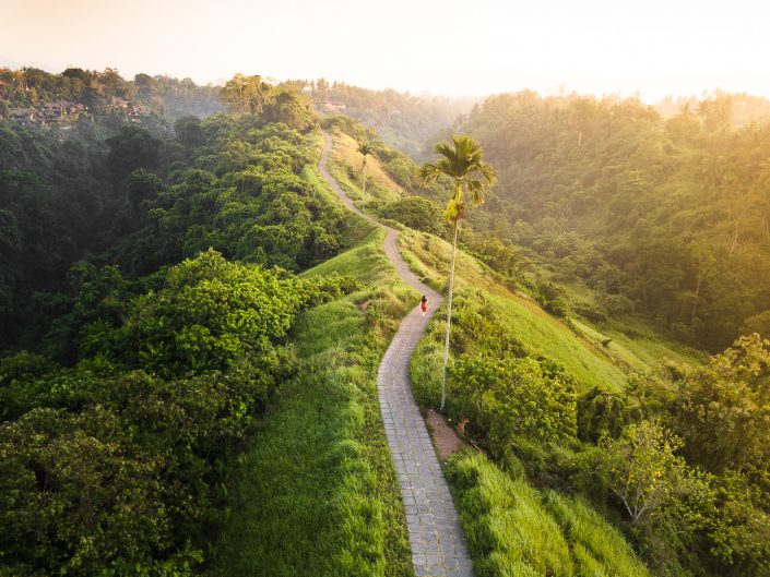 11 Amazing Things to do in Ubud