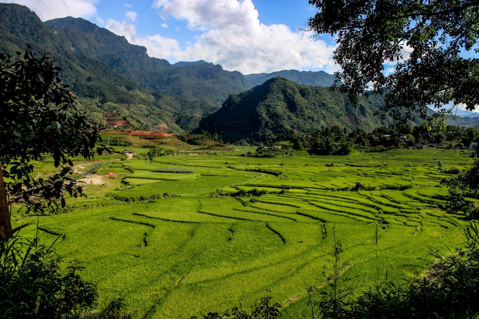 travel vietnam know before you go sapa rice fields