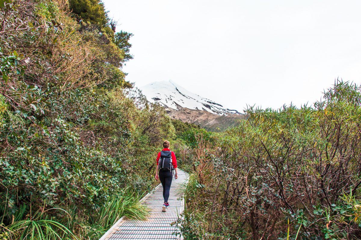 Working Holiday Visa in New Zealand - Taranaki