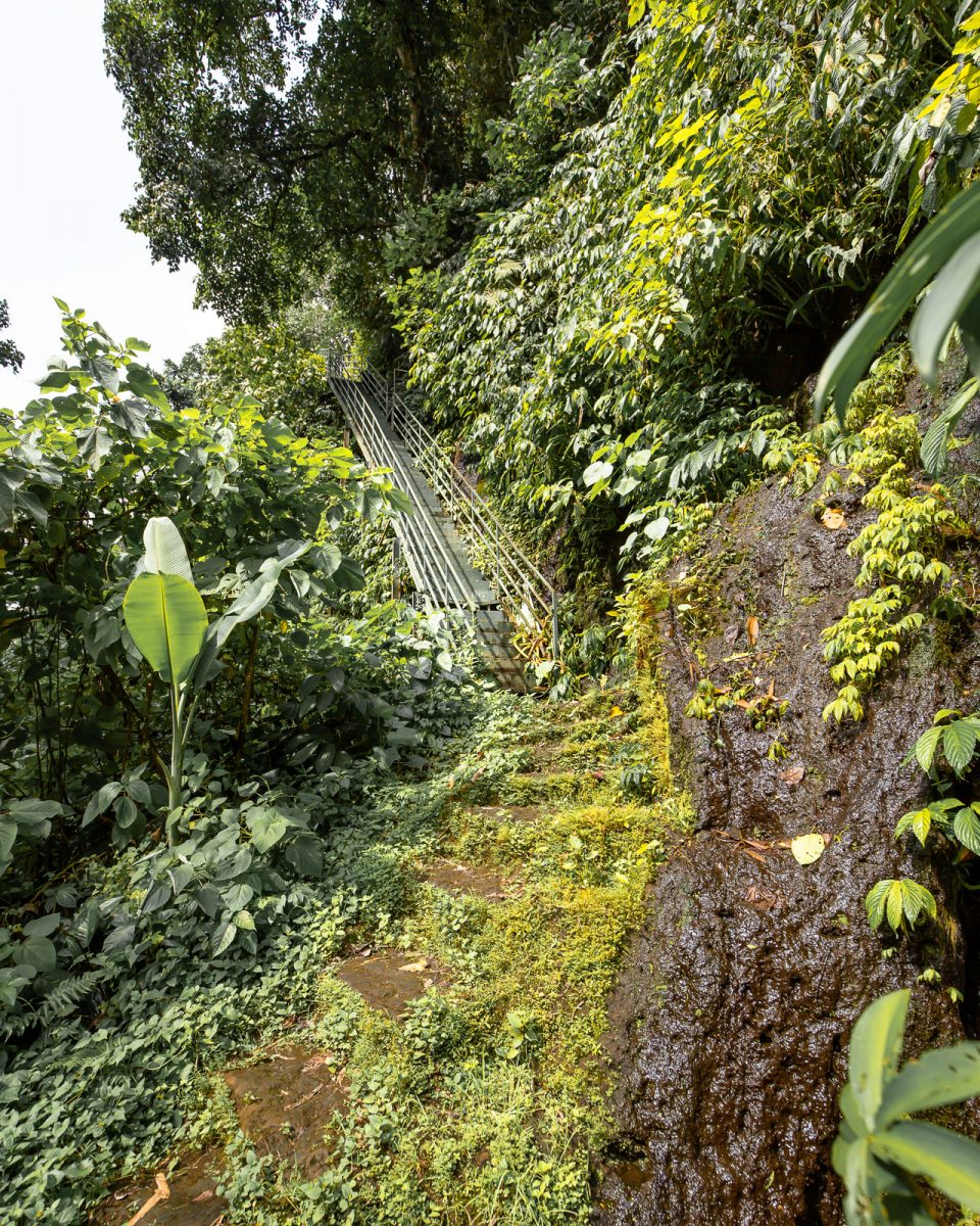 steps leading down to the dusung kuning waterfall in bali